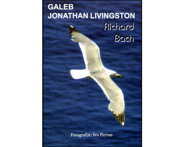 galeb_jonathan_livingston.jpg